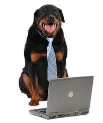 workerdog
